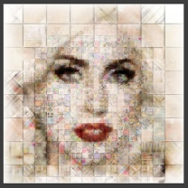 Lady Gaga collage of face