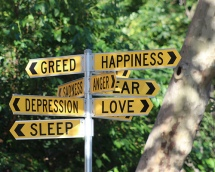 Street sign with multiple emotions names, such as Greed, Happiness, Fear, Love.