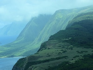 Not long ago, Hawaii faced losing it's native spoken tongue. Now, experts are focused on saving its signed one. photo credit: Cliffs on Molokai Northern Coastline James Brennan Hawaii (27) via photopin (license)