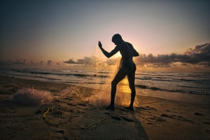 Man on beach in sunset gathers his large fishing net.