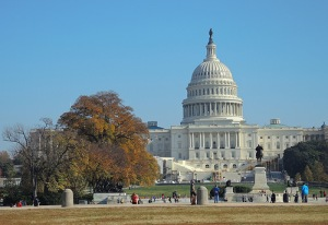 Picture of the domed White U.S. Capitol building.