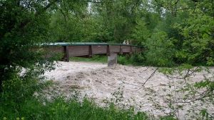 Picture of trees and a bridge, with high strong water forcefully crossing under it as if from a recent flood.